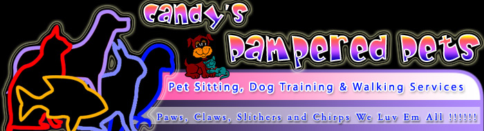 Candy's Pampered Pets Pet Sitting and Dog Walking Services